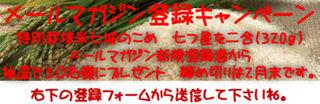 ML_kome_uma.jpg